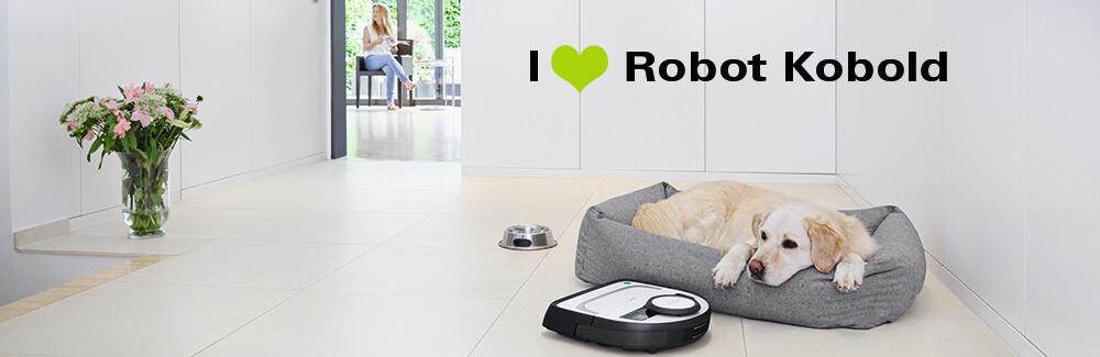 Robot Kobold